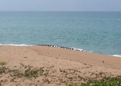 Sea View Prime Land For Sale Mai Khao Phuket Thailand (7)-1ihcpb6
