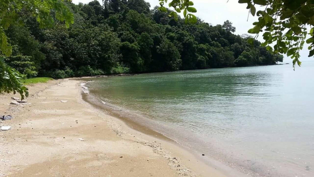 Beachfront Phuket – Hotel Resort Land for Sale 13.5 Rai